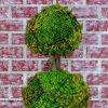 Topiary Wall Art (Photo 15 of 15)