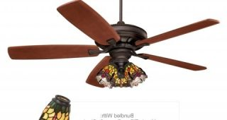 Hurricane Outdoor Ceiling Fans